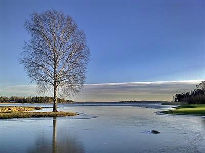 winter-1064231_640.jpg