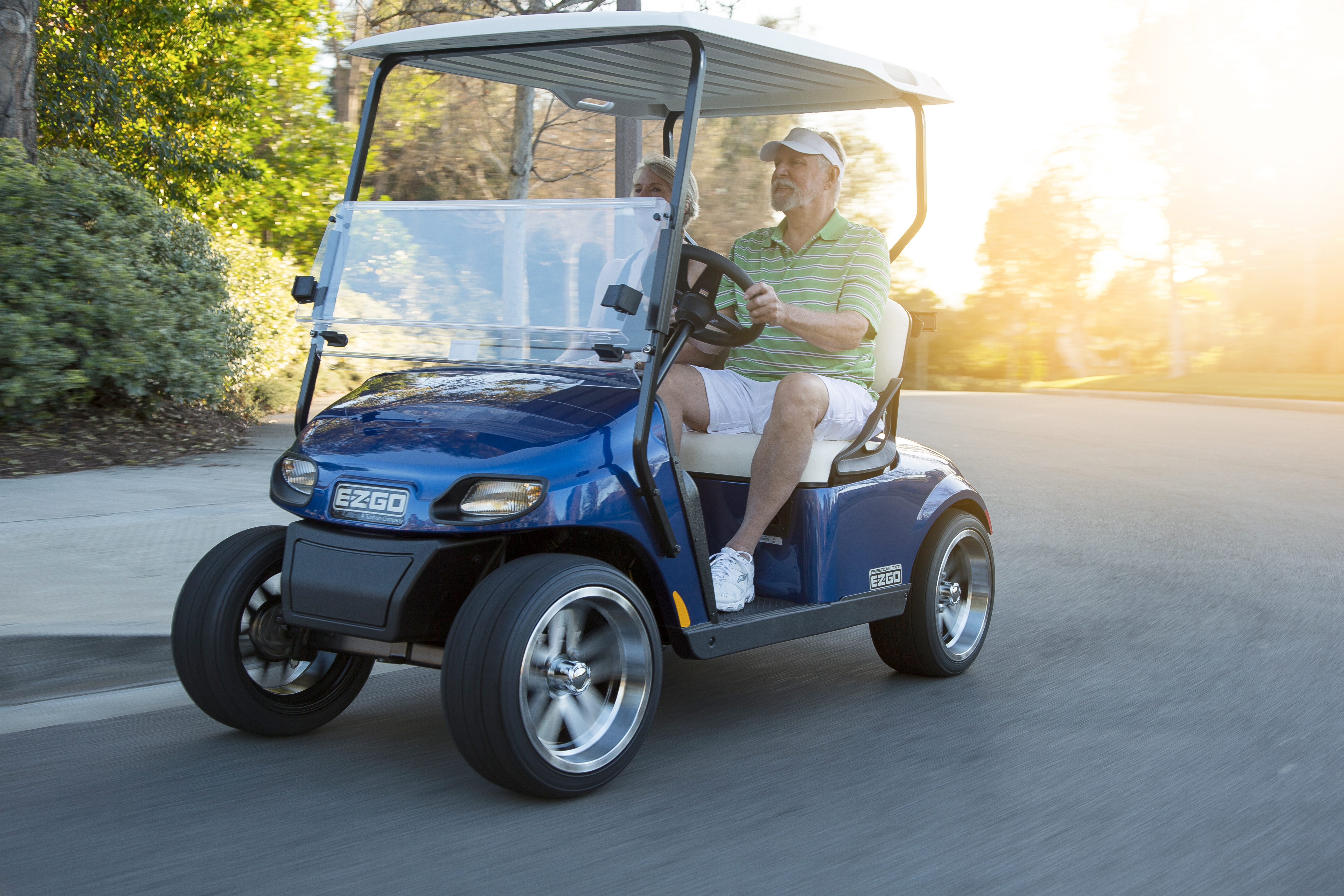 What company of electric carts should be bought for a large furniture warehouse and what are their differences 38
